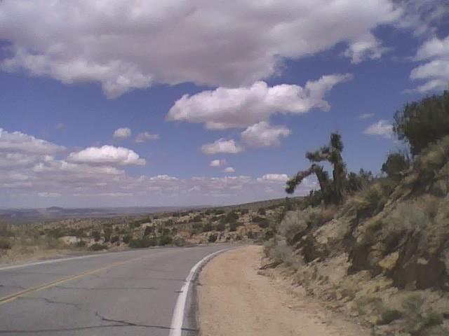 Desert-wed3