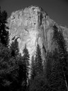 Yosemiteelcap